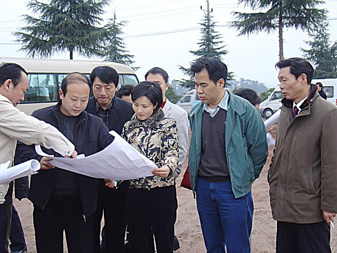 县领导到梁平工业园区调研
