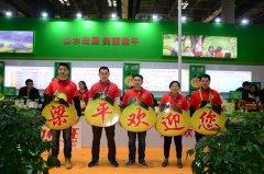 梁平:40多家企业参展西交会 100余种优质农副产品广受青睐