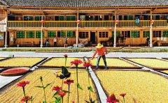 """首届""""中国农民丰收节""""本月23日举行 重庆主会场设在梁平 到10月上旬有上百场活动"""